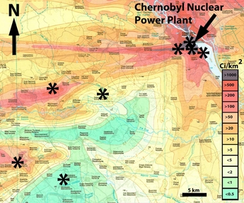 Chernobyl radiation affects bird brain size - Nuclear Engineering ...