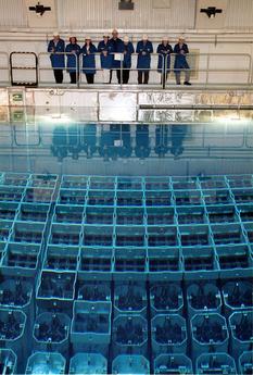 centralt mellanlager för använt kärnbränsle